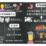 【健康ダイエット便秘】食物繊維の役割とおすすめの食べ方について解説!