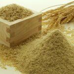 食物繊維の必要性と健康 eヘルスネット 厚生労働省