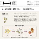 みんなの発酵BLEND 発酵文化を伝える、つなぐ。HAKKO! STUDY.  麹菌とは